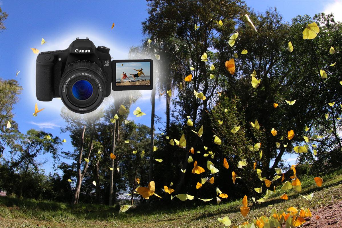 Canon 70D autofocus dual