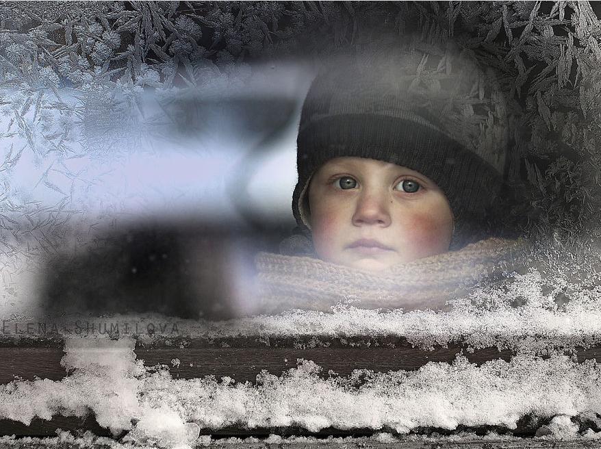 Elena Shumilova fotos niños
